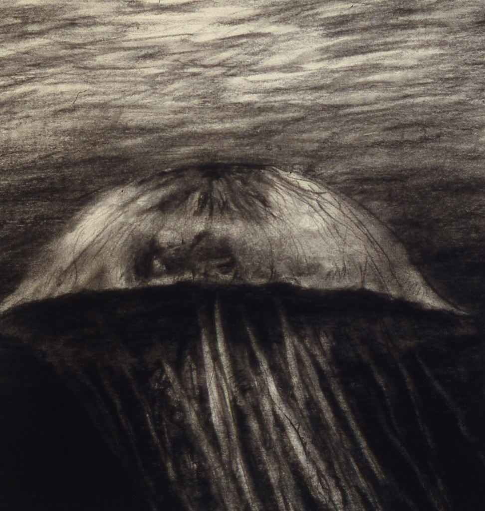 Jelly I, 1987. 28 x 20 cm [11 x 7.8in]. Charcoal on Paper.